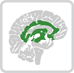 Affective network icon